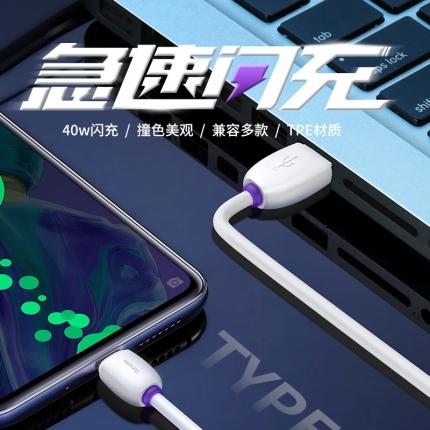 倍思 紫环HW闪充数据线 Type-C 40W